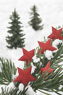Red star shape on fir twig for christmas decoration - ASF004829