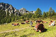 Austria, Salzburg Country, Family hiking at Altenmarkt Zauchensee - HHF004387