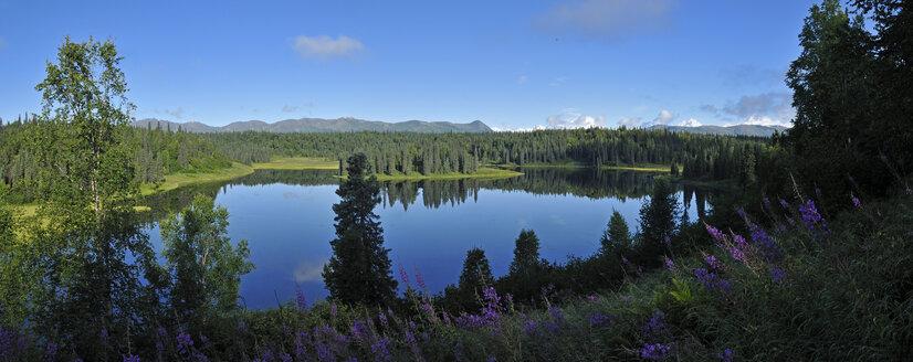 USA, Alaska, View of Mount Mckinley, Mount Hunter and Mount Foraker from Kroto Lake - ESF000244