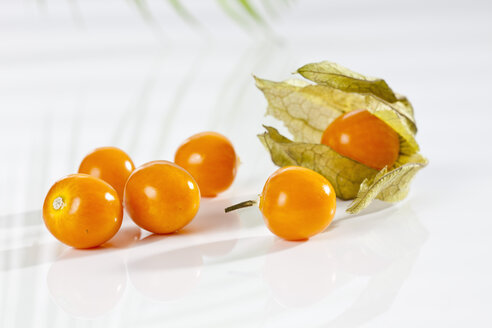 Physalis on white background, close up - CSF017439