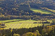 Germany, Baden Wuerttemberg, View of Field near forest near Hechingen - WDF001625
