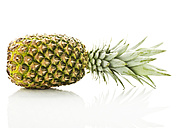 Pineapple against white background, close up - MAEF006093