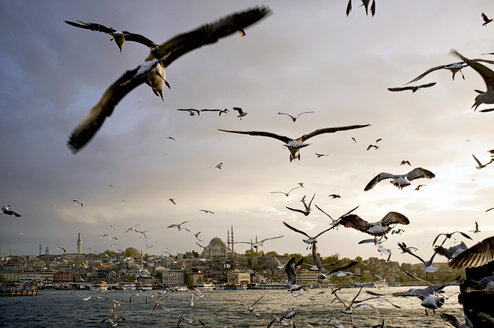 Turkey, Istanbul, View of Sultan Ahmed Mosque and Topkapi Palace - TK000010