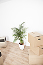 Cardboard boxes and plant pot on floor - FMKF000711