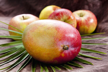Mango and apples on palm leaf - CSF018046
