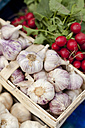 Germany, Duesseldorf, Basket of garlics with radishes - KVF000002