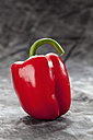 Red bell pepper on grey background, close up - CSF018193
