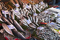 Turkey, Istanbul, Variety of fish at Karakoy  fish market - HSI000283