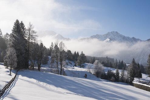 Austria, View of Tannheim Alps - UMF000602