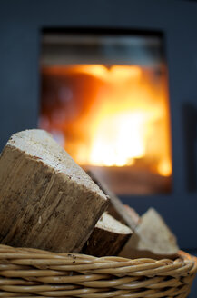 Fireplace with wood burning - MHF000157