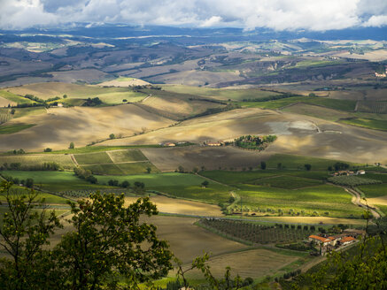 Italy, View of Tuscany from Montalcino - LF000529