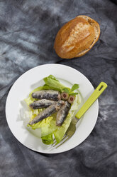 Sardines in oil on plate with bread roll - CSF018767