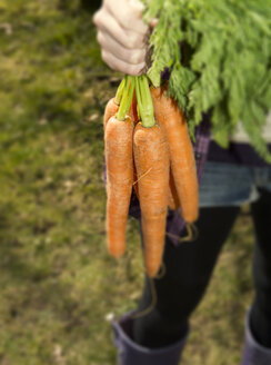 Germany, Teenage girl holding bunch of carrots - ONF000161