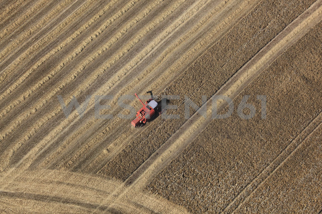 Germany, View of harvester on fields at Hartenholm - FB000014 - Frank Blum/Westend61