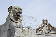 Italy, Rome, Lion fountain at Piazza del Popolo - MIZ000306