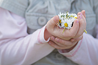 Germany, Girl holding daisies, close up - MHF000176