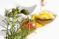 Olive herb with tomato, olives and olive oil on white background, close up - CSF019014