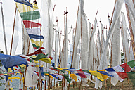 Bhutan, Prayer flags at Wangditse temple - HL000148