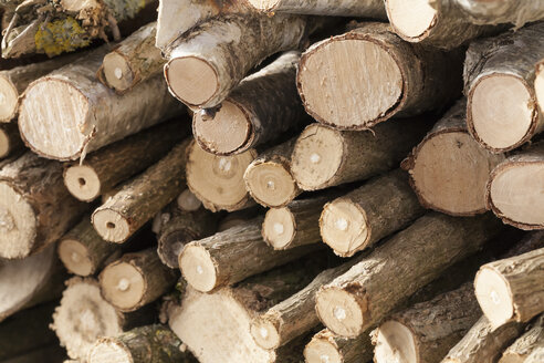 Germany, Laupheim, Stack of wood, close up - HAF000064