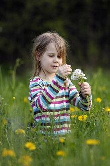 Germany, Baden Wuerttemberg, Girl sitting in meadow - SLF000087