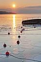 Germany, Sunrise over Lake Constance - SH000670