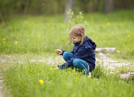 Germany, Baden Wuerttemberg, Girl sitting in meadow - SLF000133