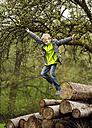 Germany, Baden Wuerttemberg, Boy jumping from wooden logs - SLF000139