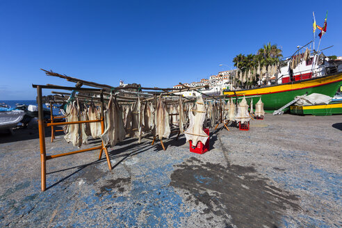 Portugal, Funchal, Stockfish hanging to dry - AM000111