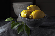 Bowl of lemons with leaves, close up - CSF019382