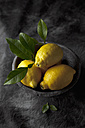 Bowl of lemons and leaves, close up - CSF019379