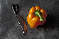 Capsicum with knife on black textile, close up - CSF019369