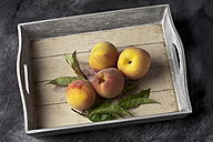 Peaches with leaves on tray, close up - CSF019360