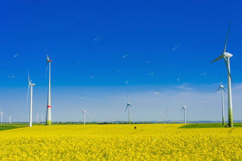Germany, Saxony, Wind turbines in oilseed rape field - MJF000199