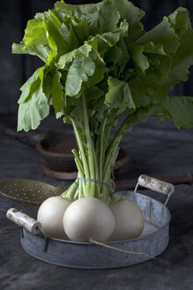 Turnip with straining spoon on tray, close up - CSF019618