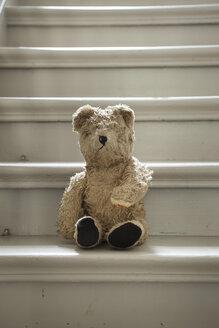 Teddybear on steps - FMKYF000444