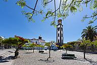 Spain, Santa Cruz de Tenerife, View of Our lady of conception church - AM000417