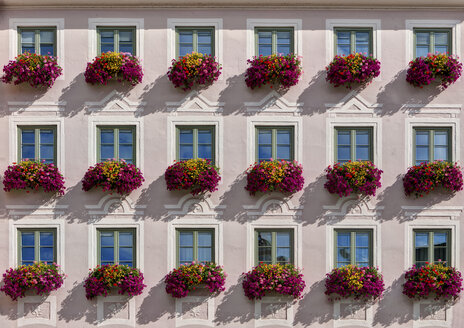 Germany, Bavaria, Decorated window with flowers - AM000466