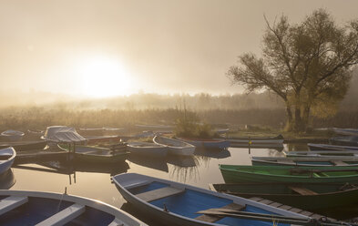 Germany, Bavaria, View of fog on boat at dawn - AM000558