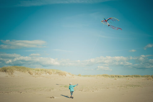 Denmark, Romo, Boy flying kite at North Sea - MJF000264