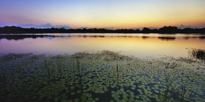 USA, Florida, Maitland, View of Lake Destiny  at sunset - SMAF000141