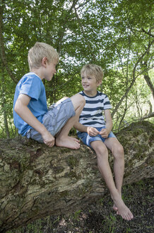 Germany, Bavaria, two boys sitting on a tree in the urban forest - NH001412