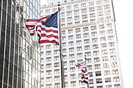 USA, New York, View of American flag - SKF001429