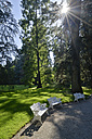 Germany, Constance, Park of arboretum and benches - SH000847