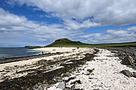 United Kingdom, Scotland, View of Coral beach near Dunvegan - EL000258