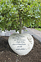Stone with German text and small tree on a grave - LA000183