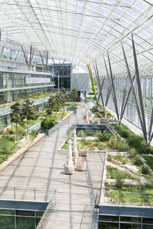 Germany, Hannover, Interior of greenhouse - KFF000074