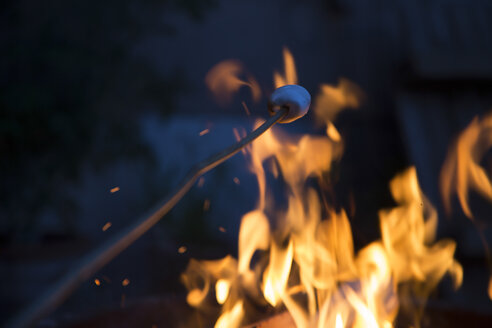 Bonfire and skewer with marshmallow - SARF000080