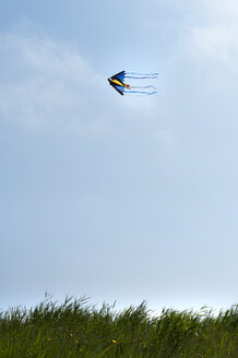 Kite flying at North Sea - OD000265