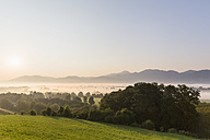 Germany, Bavaria, View of Murnauer Moos with fog at sunrise - FO005153