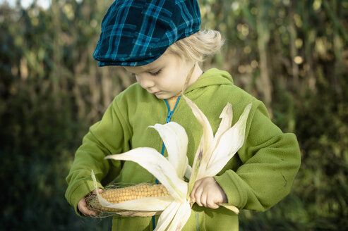 Germany, Saxony, Boy holding corn cob - MJF000312